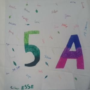 College-5a