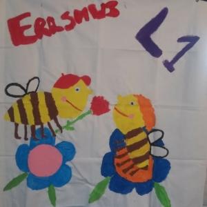 Erasmus-L1